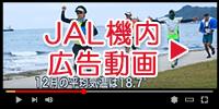 JAL機内広告動画